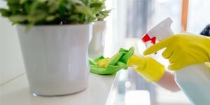 Sharni Home Cleaning Services